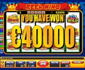 Twin win slot game